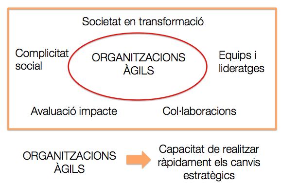 Organitzacions àgils